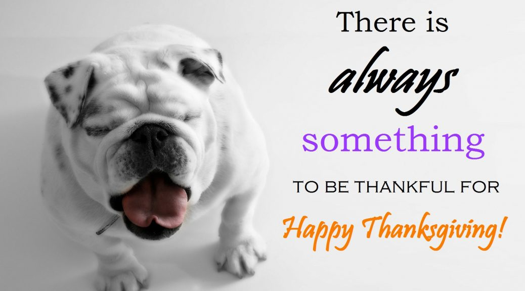 happy-thanksgiving from Diamond Head Living LLC